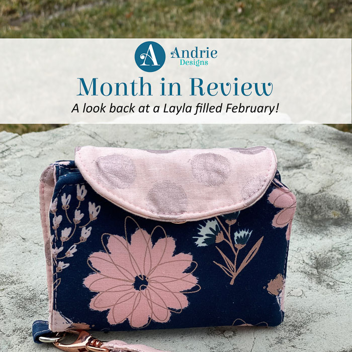 Month in Review - February 2020 - Andrie Designs